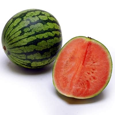 size of refrigerator organic mini seedless watermelon