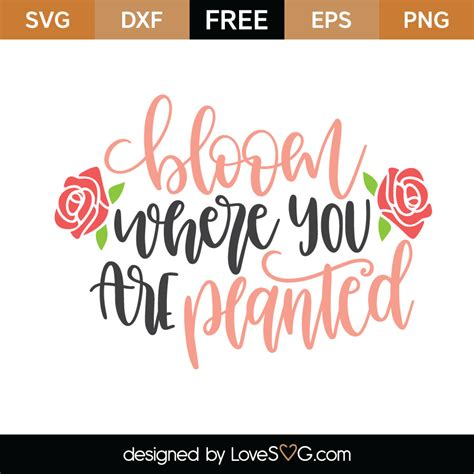 Whether you're a global ad agency or a freelance graphic designer, we have the vector graphics to make your project come to life. Bloom Where You Are Planted | Lovesvg.com
