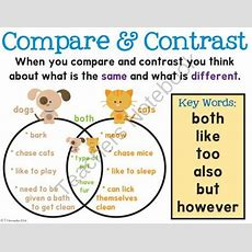 Free Compare & Contrast Poster From First Grade Is Sweet
