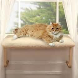 cat window seat cat window perches do you one