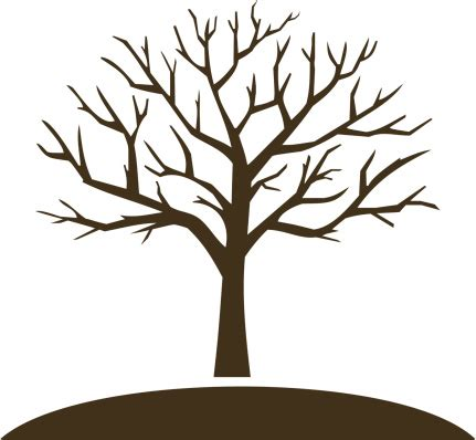 tree trunk clipart   cliparts  images