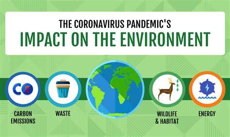 infographic  environmental impact  covid