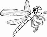 Dragonfly Coloring Insect Pages Cute Cartoon Illustration Drawing Line Realistic Funny Cool Getdrawings Printable Drawings Clip Clipart Character Print Vector sketch template