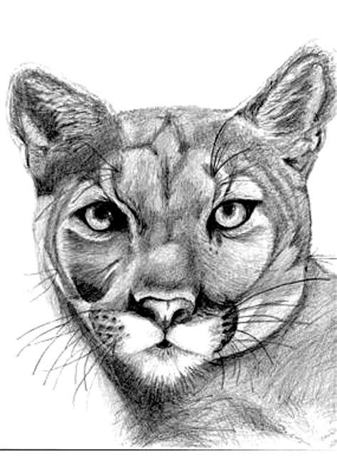 TATTOO DESIGNS AND E-BOOKS: Animal Tattoo Design Set #2