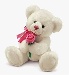 IMAGE WORLD: Cute Teddy Bear Beautiful Collection & Pictures