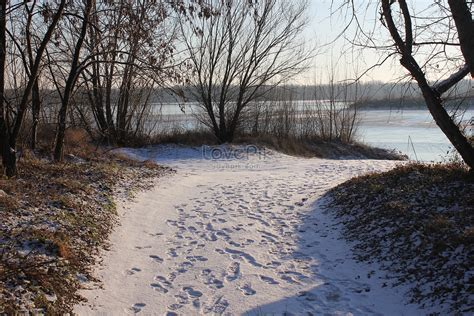 The First Snow Of Winter Photo Imagepicture Free Download