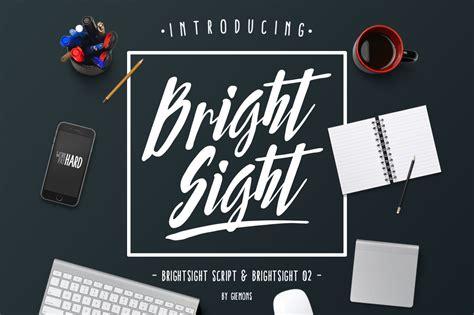 Bright Sights Sight Paint Application Kit