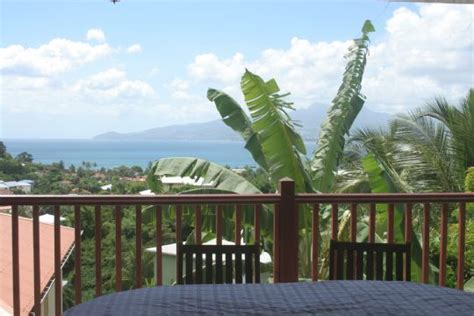 location bureau martinique appartement papayer vert anse à l 39 ane martinique