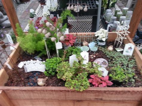 17 best images about gardening terrariums on
