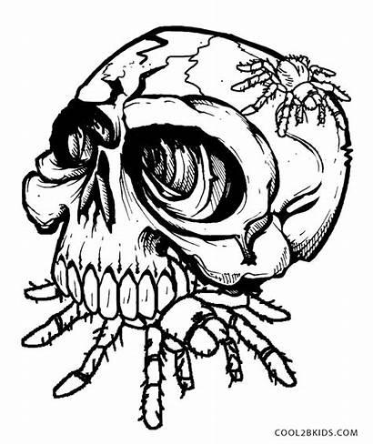 Skull Coloring Pages Skulls Spider Sugar Printable