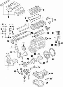 Genuine Oem Vw Timing Belts