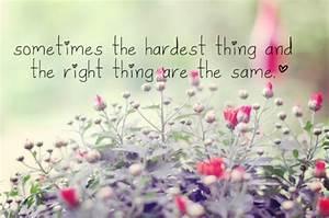 beautiful sayings on Tumblr