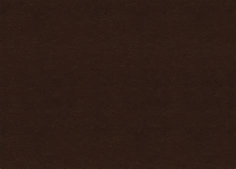 Trinity Dark Brown Leather Swatch