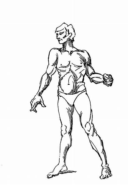 Human Coloring Pages Outline Female Muscular Sky