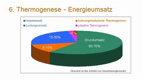 energieumsatz fettverbrennung thermogenese