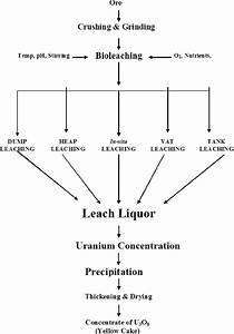 Flowchart For Uranium Bioprocessing