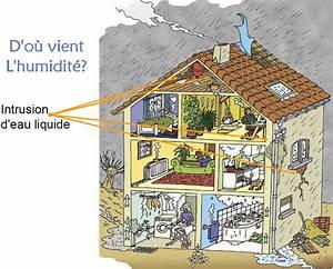 Absorbeur D Humidité Maison : odeur humidit maison habillage mur exterieur portrait que ~ Dailycaller-alerts.com Idées de Décoration