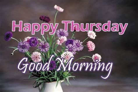 happy thursday wishes messages quotes images