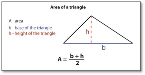 How To Area Of A Triangle Geometrical Shapes Assignment Point