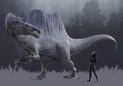 Spinosaurus Hoffmeyer Herschel Deviantart Isolated