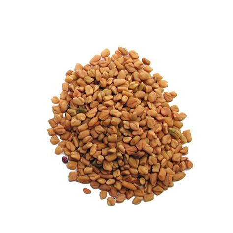 Buy Organic Fenugreek Seeds For Cheap Used For Sprouting