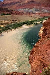 River Sediment Dynamics