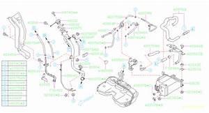 2008 Subaru Forester Evaporative Emissions System Lines