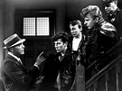 FilmStruck — THE YOUNG SAVAGES ('61) by Greg Ferrara John...