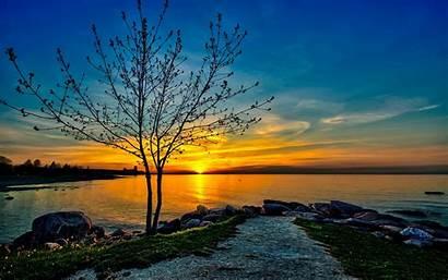Sunset 4k Sky Orange Clouds Tree Lake