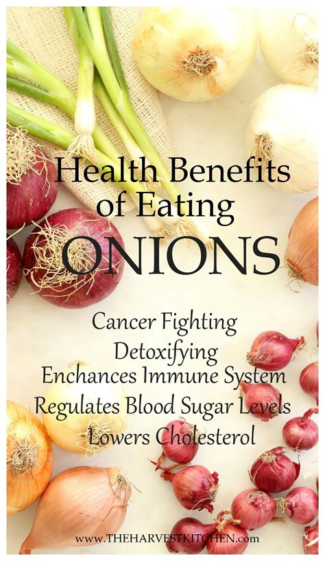 health benefits  eating onions  harvest kitchen
