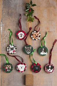 1000 images about Holiday Pet Ideas on Pinterest