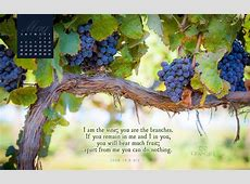 May 2014 Vine and Branches Desktop Calendar Free May