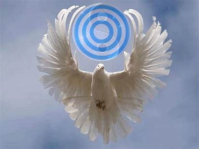 Spirit God Holy Dove Presence Human Trinity