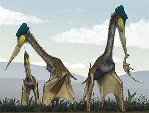 File:Life restoration of a group of giant azhdarchids ...
