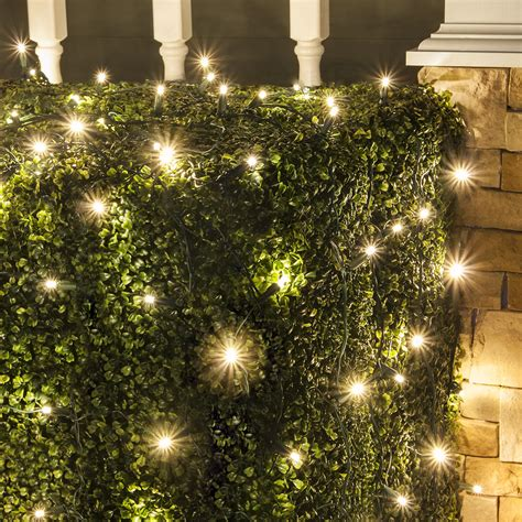 wintergreen lighting warm white led net lights christmas