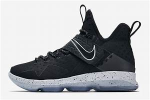 Lebron James Shoe Size 14 | Traffic School Online