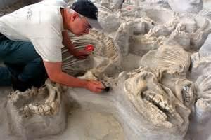 travel northeast nebraska ashfall fossil beds state historical park