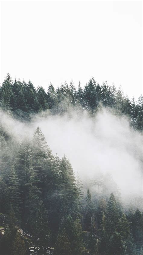 adventurous forest mountain iphone  wallpapers