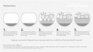 How To Assemble A Juicykits Com Terrarium Kit
