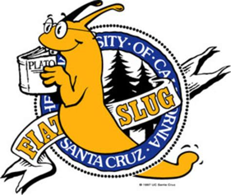 Image result for uc santa cruz banana slugs