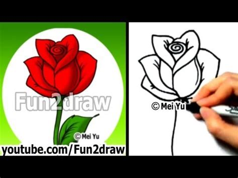 fundraw rose fundraw stars   funny drawers