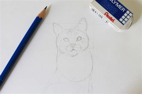 draw  realistic cat step  step tutorial