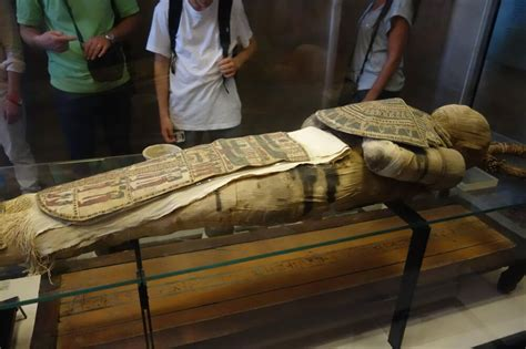 una mummia dellantico egitto   sofisticato motivo