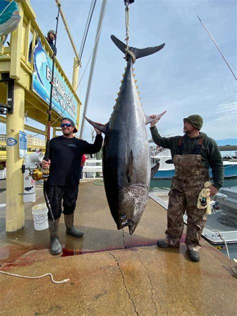 record tuna bluefin state virginia pending fish fishing