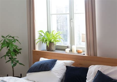 Zimmerpflanzen Im Schlafzimmer by Zimmerpflanzen Im Schlafzimmer Garten Fr 228 Ulein