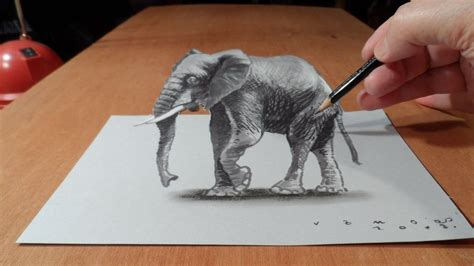 trick art   draw  elephant time lapse drawing