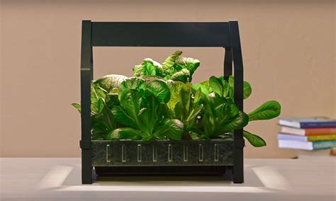 cuisine kit ikea ikea launches indoor garden that can grow food all year
