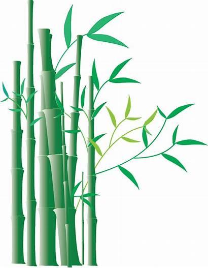 Bamboo Border Clipart Clip Illustrator Deviantart Chinese