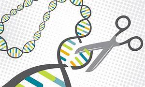 New Technique Enables Safer Gene