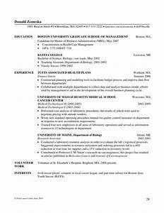 resume sample cfa candidate free best free home With free candidate resumes